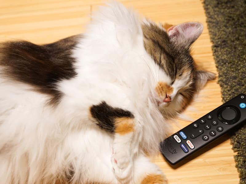 今回は、新しくなったFire TV Stickの新メニューを簡単に紹介していこう