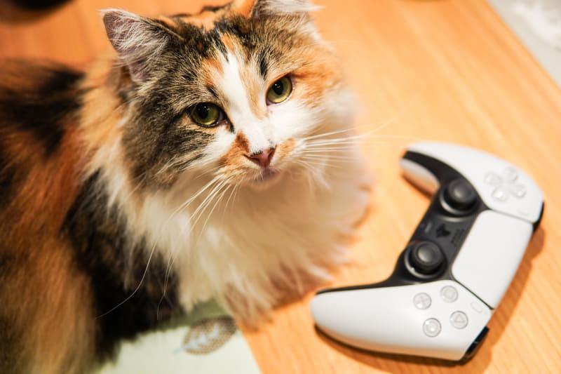 PCから、PS5を自宅Wi-Fi内でリモートプレイができるように設定してみよう