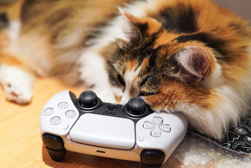 今回は外出先から自宅へモバイルWi-Fiルーターを使って接続して、リモートプレイで遊んでみよう