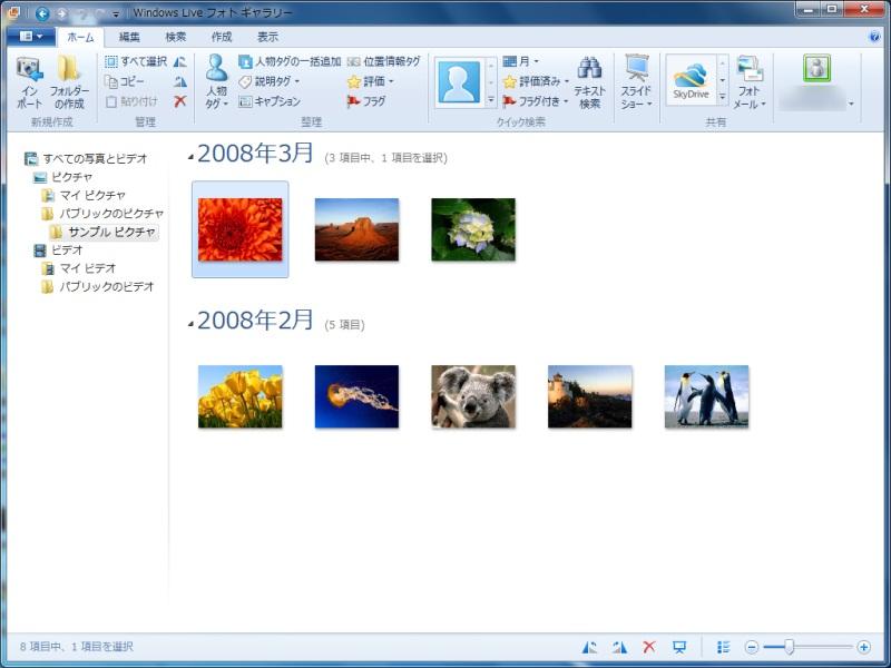 Windows Live フォトギャラリーの新バージョン