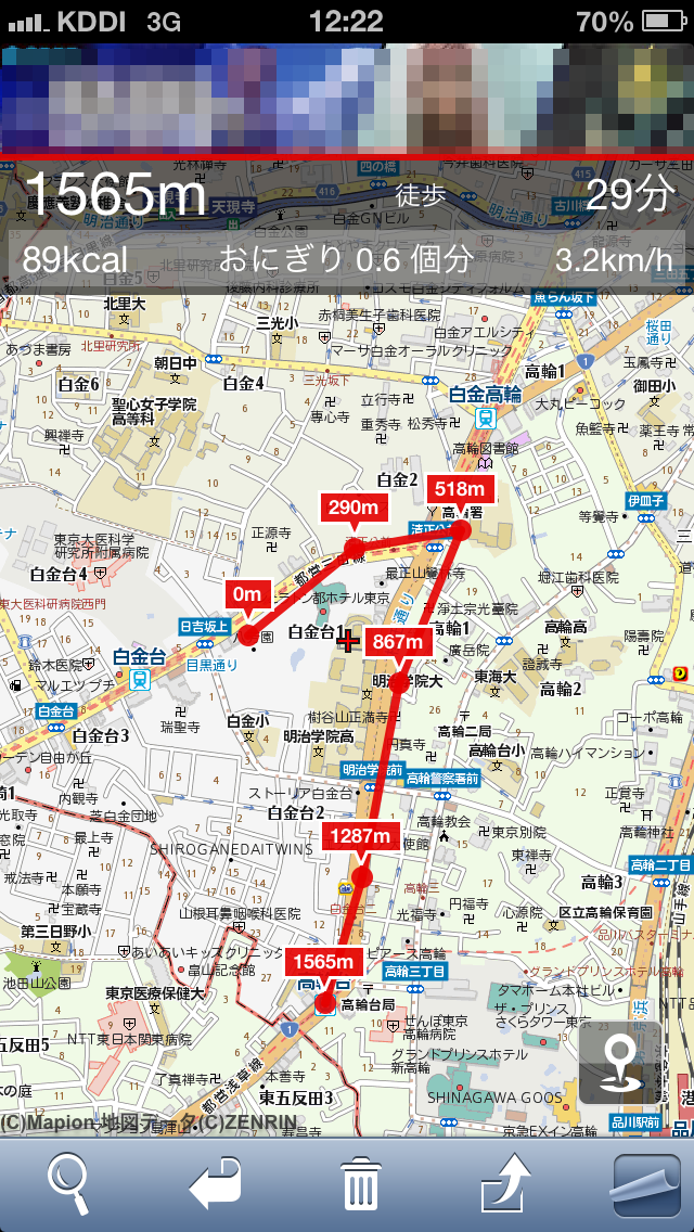 地図上をタップしながら経路を指定