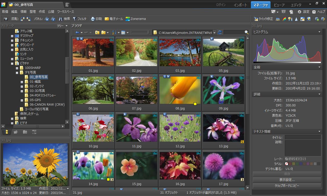 フォトレタッチソフト「Zoner Photo Studio 15 HOME J」では、写真画像の管理機能を強化。未整理の膨大な写真も自動分類するという