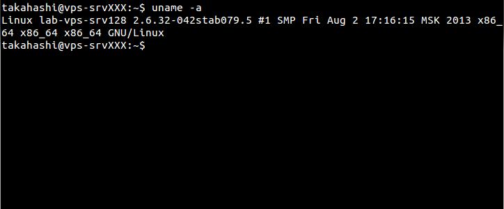 unameコマンドでカーネルを確認。CentOS 6系ベースのカーネルと思われる