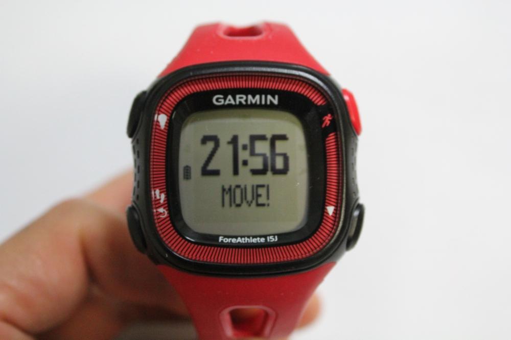 1時間移動しないと「MOVE!」というメッセージが表示される