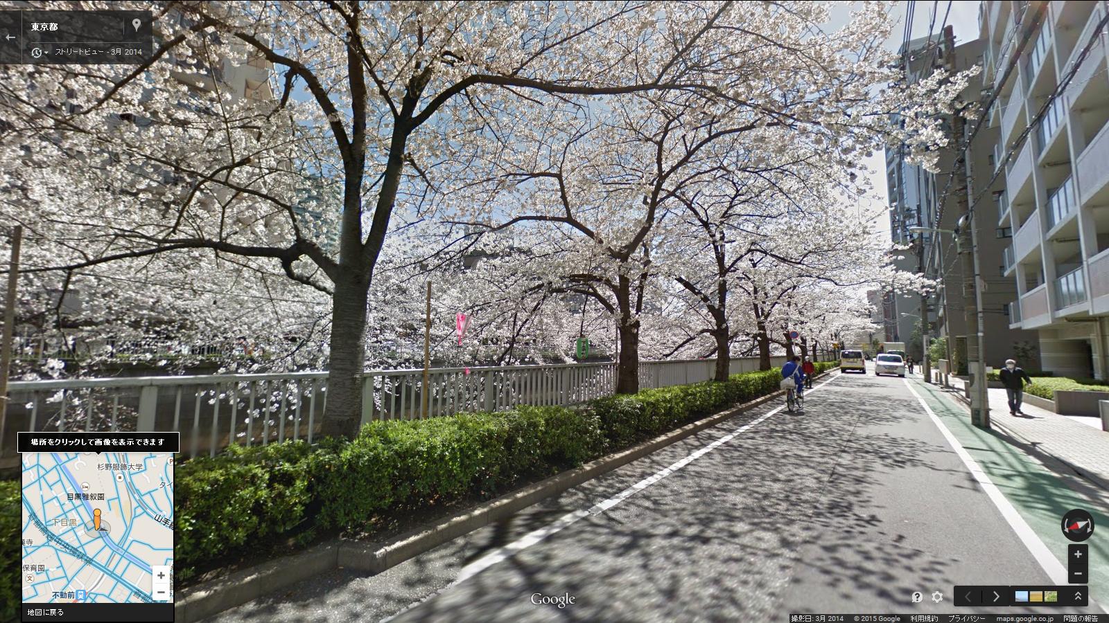 目黒川の桜(Google マップの「ストリートビュー」より)