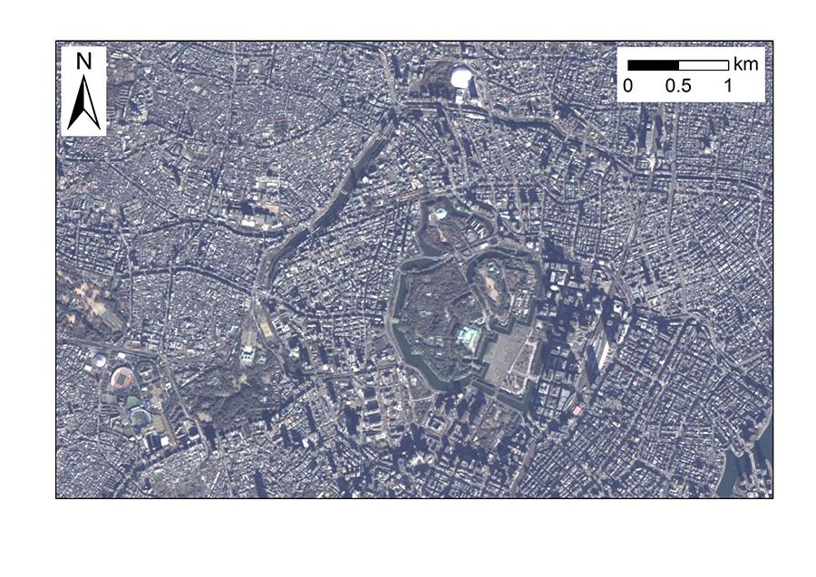参考:同じエリアの「だいち」衛星写真