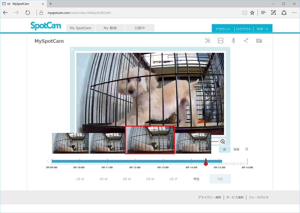 タイムラインの過去の部分をクリックすると録画した動画が表示される。サムネイルも表示可能