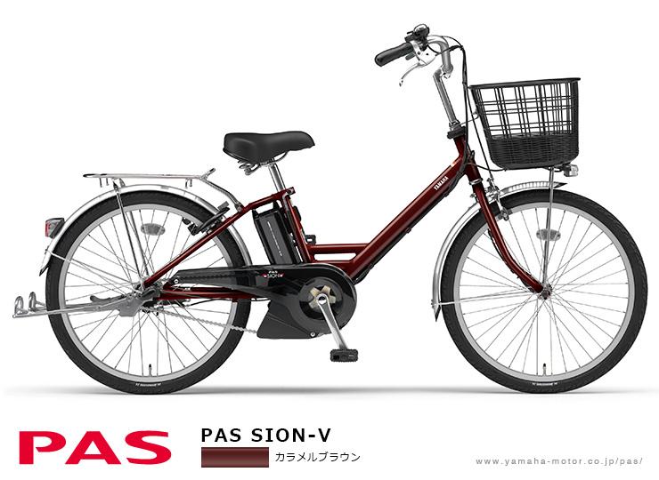 「PAS SION-V」カラメルブラウン