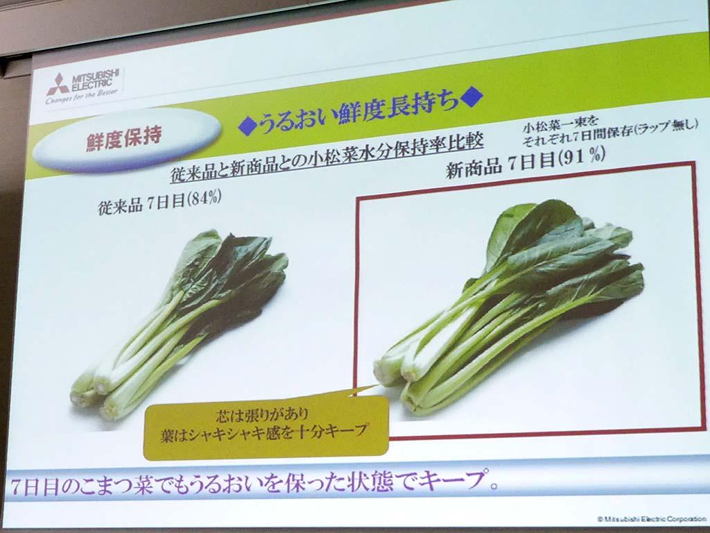 小松菜で乾燥度を比較。ラップなしで、照射ありなしをそれぞれ7日間保存したところ、水分保持率が高かった