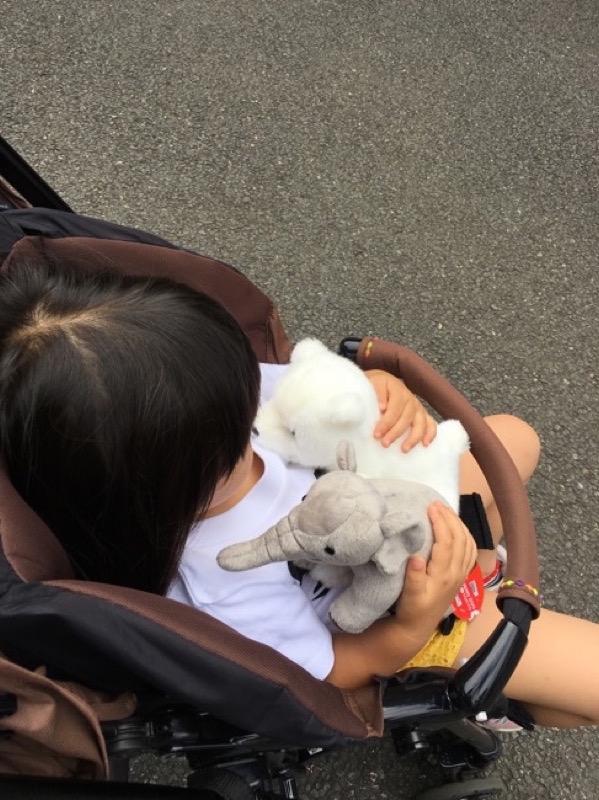 家に沢山あるのにクマの人形を連れて帰りたいと言うので購入。象は親が押し付けた。