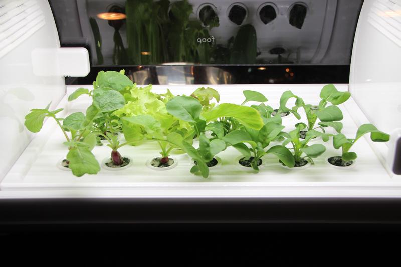 Co2センサーを省略し、求めやすい価格を実現。安定した野菜栽培を可能としている