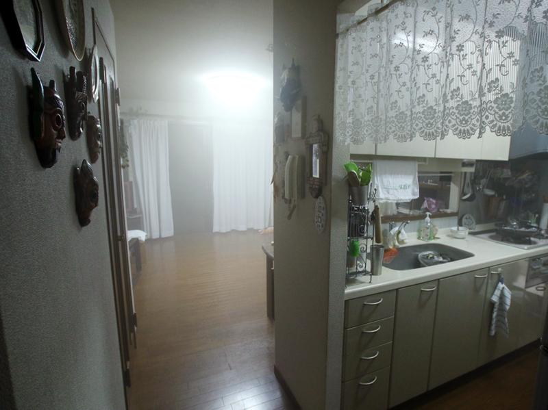 奥の廊下はやや薄いがスモークが回り込んでいる。またキッチンにも回りこんでいることがわかる。どうやら壁伝いに回り込むようだ