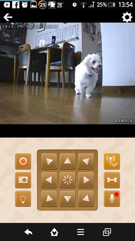 画面上部にリアルタイムの映像。下にはリモカをコントロールするパネルが表示されている