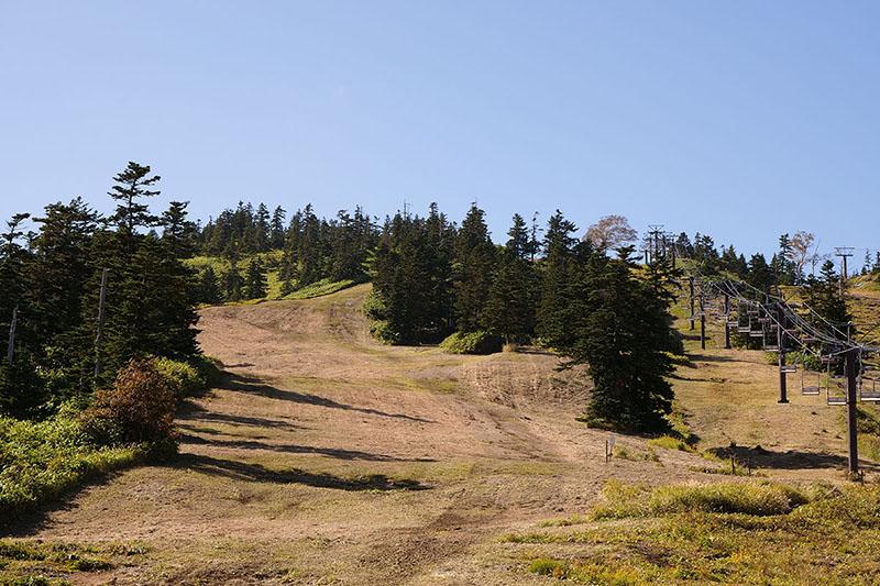 けっこうな急坂という感じですが、軽く走り下るような感覚の下山はミョーに愉快。ただし、歩いて下山する場合、脱げたりズレたりしない、ウォーキングやトレッキングに向く靴が必要です