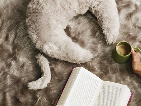 アテックス、ファー素材を使ったしっぽ付きの数量限定マッサージクッション 毛足の長いファー素材のカバーを採用したモデルで、猫・うさぎのしっぽチャームが採用された限定モデル。写真は首周りのマッサージ向けの「ルルド ホットネックマッサージピロー」。カラーはリッチファーグレー