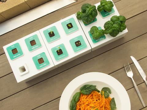 ブロック玩具のように連結して、栽培面積が増やせる水耕栽培キット PLANTY SQUARE