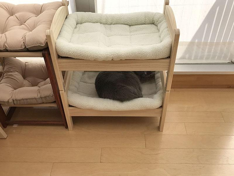 こんな感じでIKEAの人形用ベッドを2段ベッド化しました。マットは別売品を敷いています。1段目に拙宅猫「うか」が寝ています
