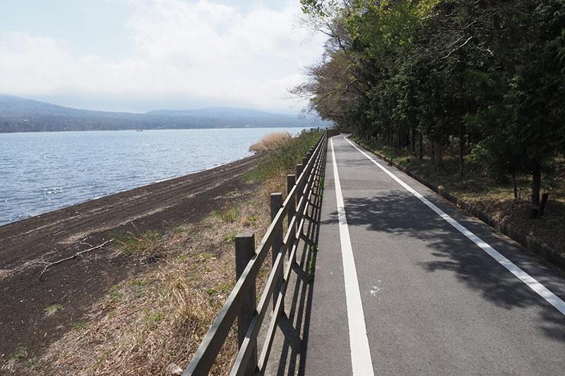 山中湖の周囲に整備されたサイクリングコースは、湖沿いをたっぷり走れるコース。1周だいたい20kmくらいでしょうか