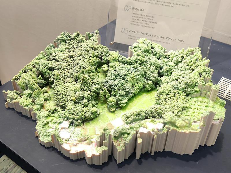 ドローンの空撮データから作った森
