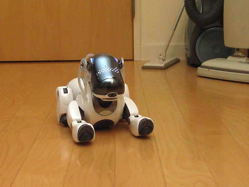 1999年~2006年の世代のAIBO。最新型よりかなり「ロボ的」なデザインです。ちょっと無機質?