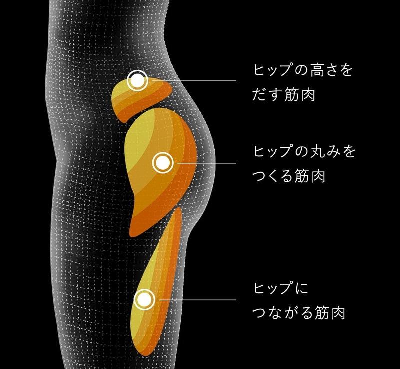 大殿筋、中臀筋、ハムストリング、3つの筋肉に効果的にアプローチ