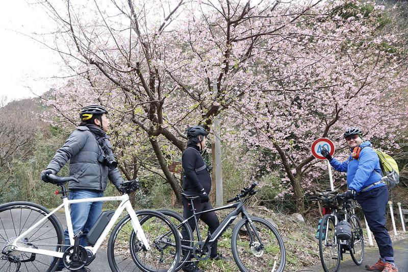 下ってきたら桜も咲いていました