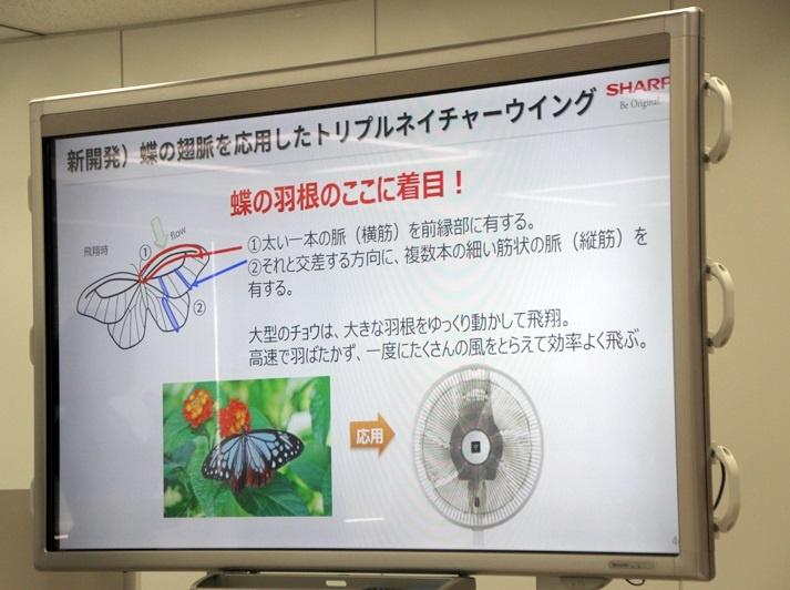 他の昆虫に比べて太い羽根の筋が大きな揚力を生むことに着目し、扇風機の羽根にも蝶の翅脈形状