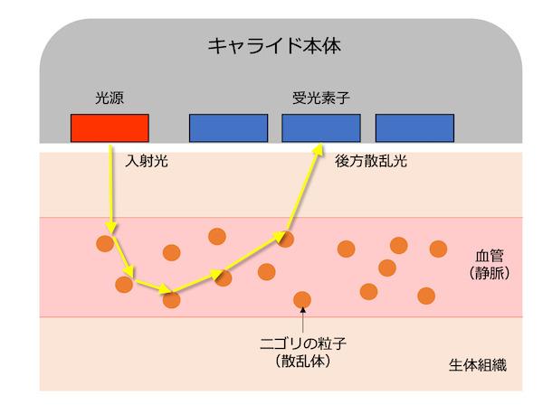光を静脈(血管)に当て、ニゴリ粒子に反射した光の散乱を独自のアルゴリズムで解析する