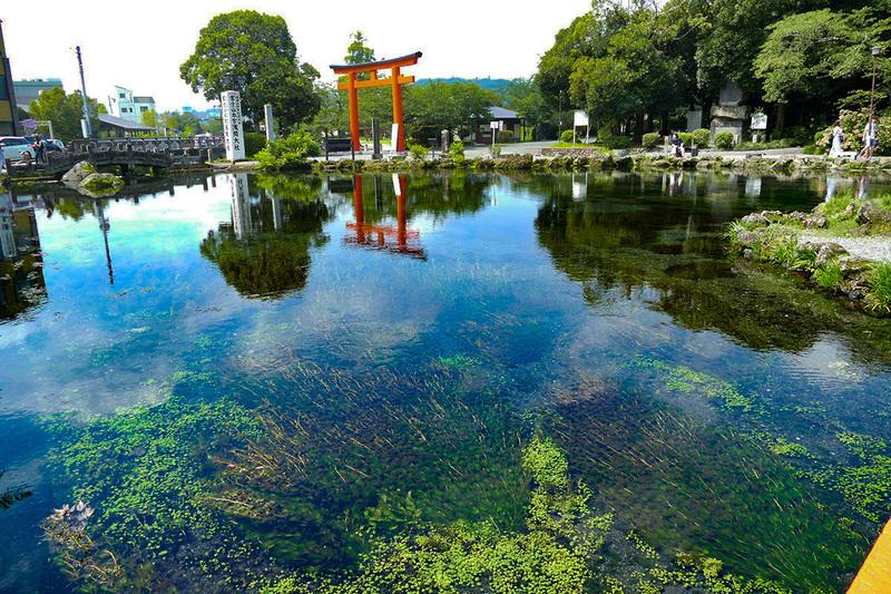 富士の伏流水が生み出した池。全部湧き水で、その透明度が凄い