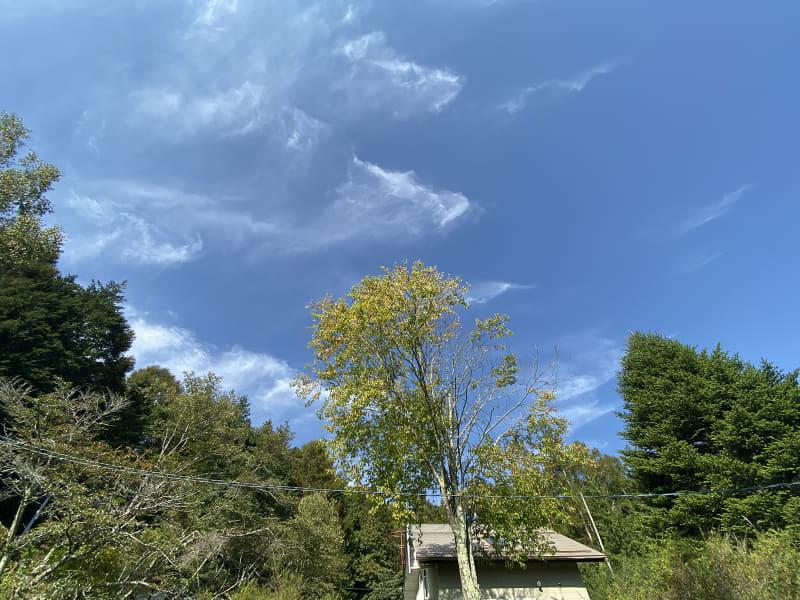 「iPhone 11 Pro Max」で撮った青空