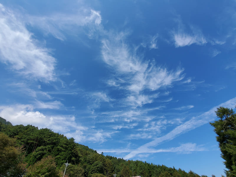 「Galaxy S10+」で撮った青空
