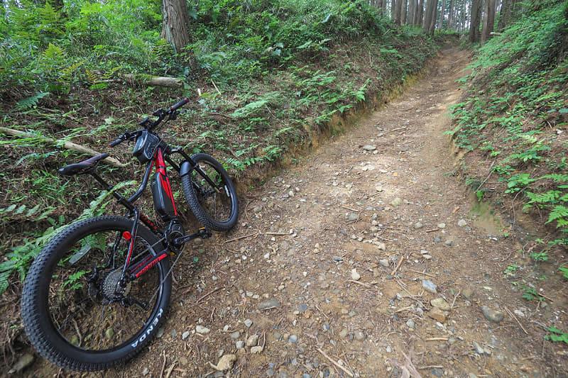 こういう山道ではRIDGE-RUNNERの本領発揮。アシストのおかげで急峻な上り坂も楽しく走れます。滑りやすい泥道もばっちり走破!