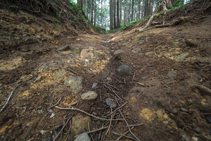 ただしこんな泥道を走ると、すぐに自転車は泥だらけに。帰宅してから泥汚れを洗いますが、その洗浄作業がけっこう面倒で時間もかかるんです