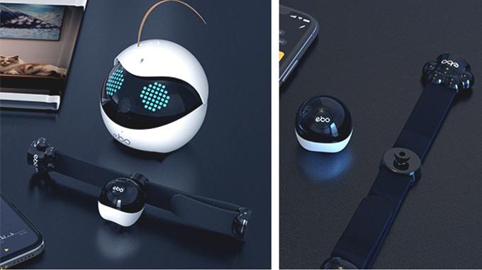 上位モデル「Ebo Pro」は、猫の歩数などを確認できるスマート首輪が付属