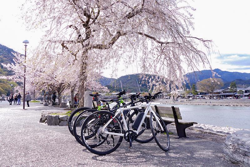 京都の桂川沿いでの一枚