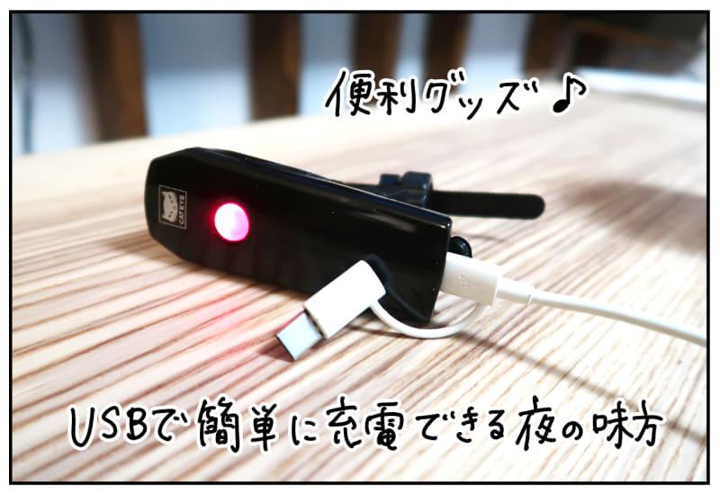 USBで簡単充電。自転車用の雑貨ってたくさんあるのだと知った
