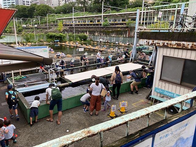 金魚釣りコーナー、なかなかの混雑っぷりです