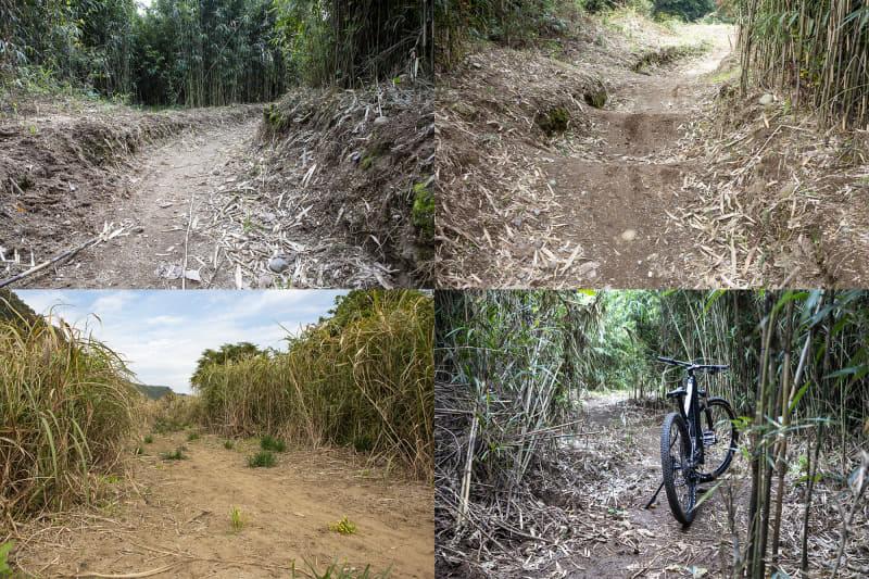 ダートと砂地がある。コースは藪の中に設定されているので先が見えない。競技レベルで走ると攻略が難しそう。将来的にはここで競技も行なう予定とのこと