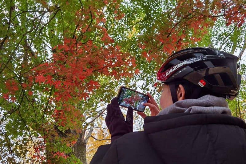 代々木公園の紅葉。少しだけどとてもキレイ