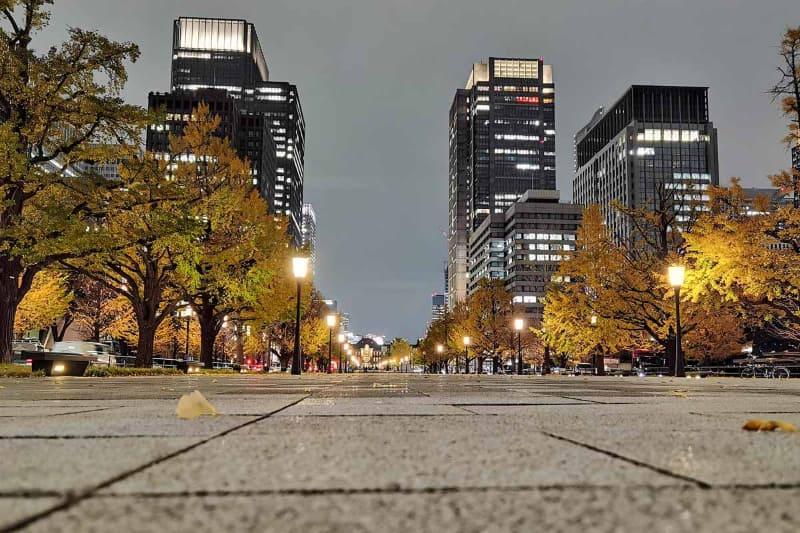 帰る頃には日も暮れて、待ち合わせ場所の東京駅もライトアップ。これもまたいいですね
