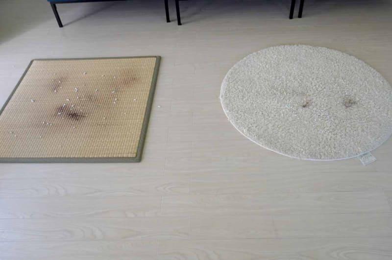畳カーペットと毛足の長いラグに、細かい砂、猫のトイレ砂、人毛などをばらまいておく