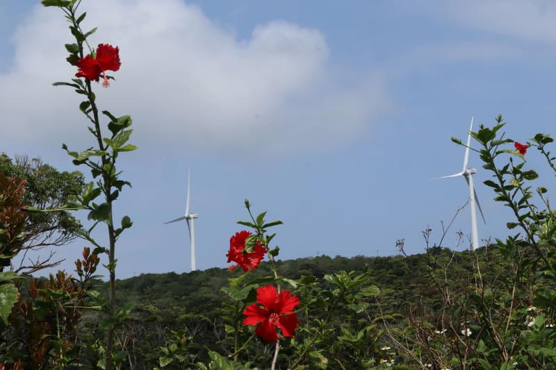 海に囲まれた沖縄は海風にも恵まれている。しかし台風の通り道という弱点も