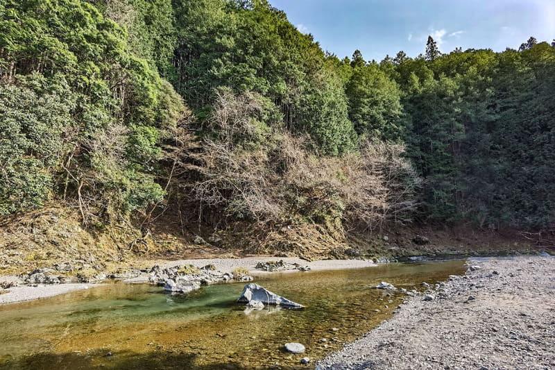 こんな清流がある名栗川。県道をサイクリングしていてもよく見えます