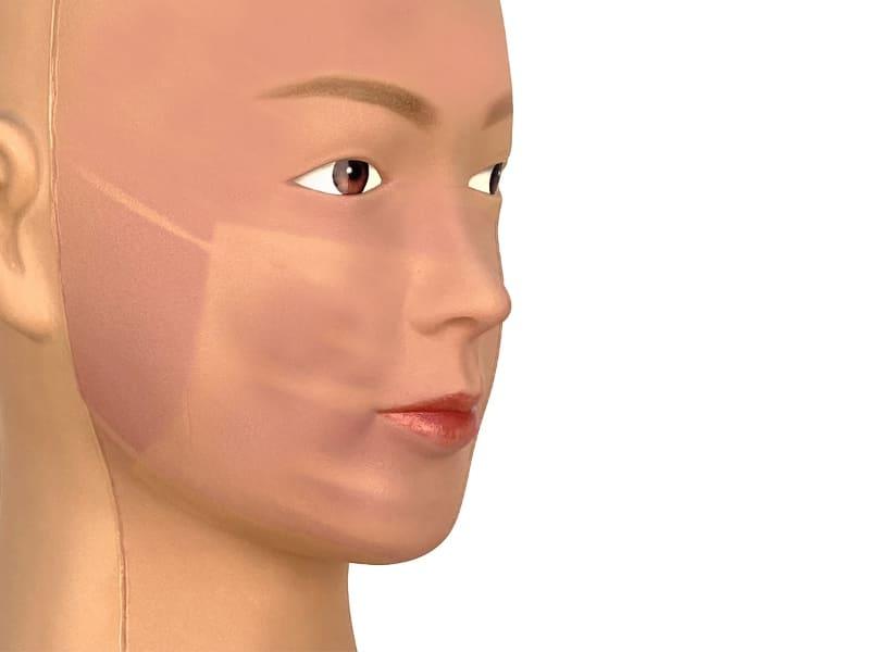 花王がマスク着用時の日焼けに関する調査を行なった結果を紹介