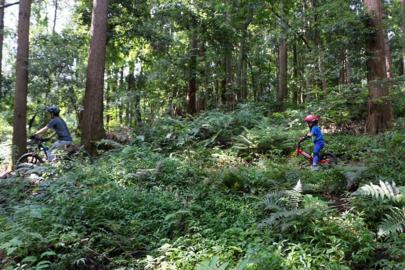 ちょっと上りがあるコースにも挑戦! 森の中を走るので、空気も涼しげで気持ちいい!