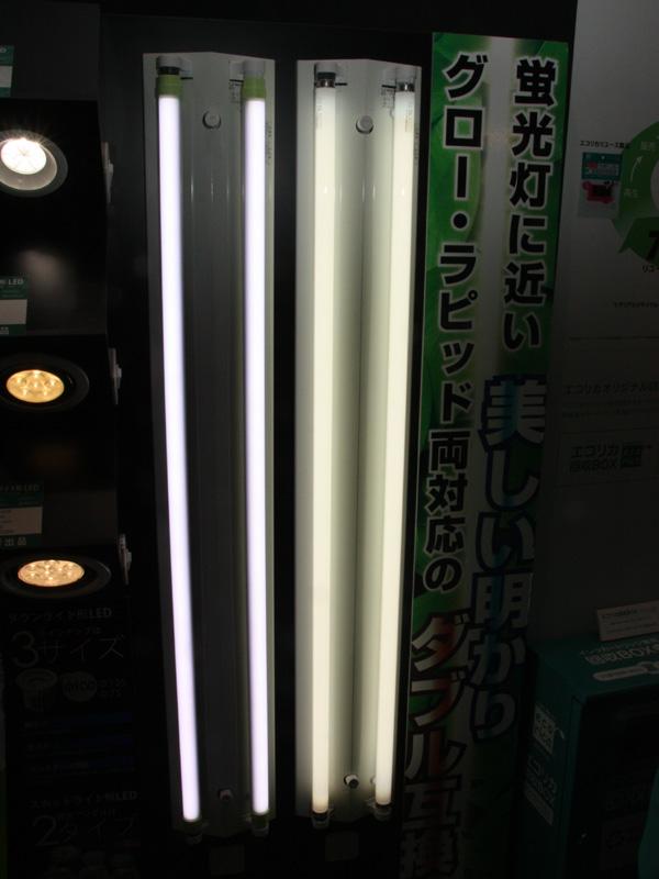 エコリカでは蛍光灯タイプのLEDも取り扱っている。グロースターターとラピッドスターター形の両方に使用できる