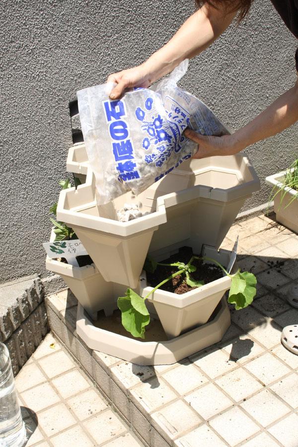 1段目と同様の手順で、鉢底用の軽石を敷き、その上に土を入れ水分を含ませる