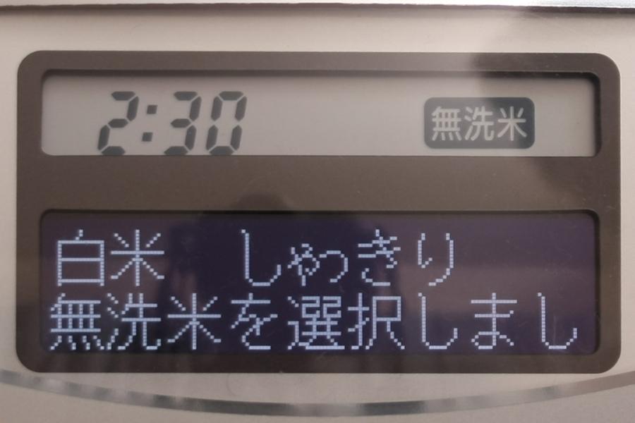 情報が表示される液晶パネルは2段になっており、上段は時刻などが表示される(ただしバックライトはなし)。下段は白黒反転した液晶ディスプレイで、白い文字が浮かび上がるようになっている