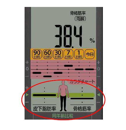 同じ年齢、同じBMI値の人の平均値と自分の測定数値が比べられる「同年齢比較」機能の表示画面。皮下脂肪率、骨格筋率のレベルを5段階で表示する