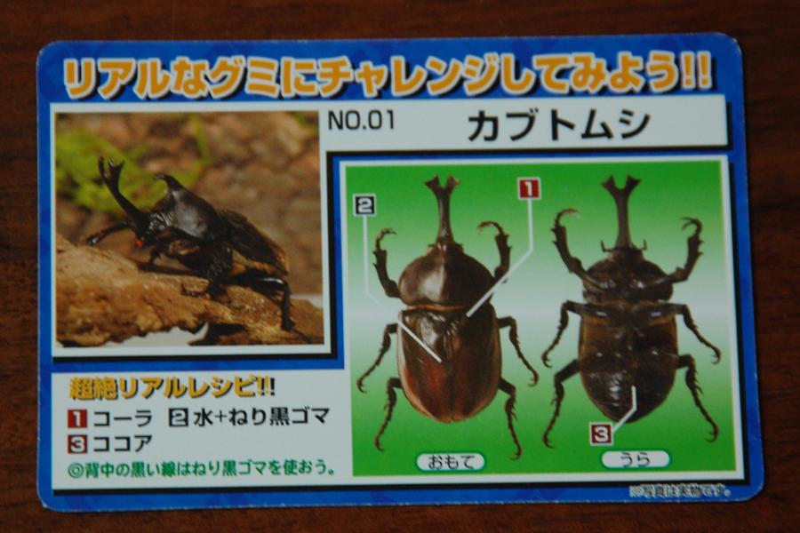 男の子が好きそうなカードタイプのレシピ。実際の昆虫写真も掲載されており、作るときの参考になる